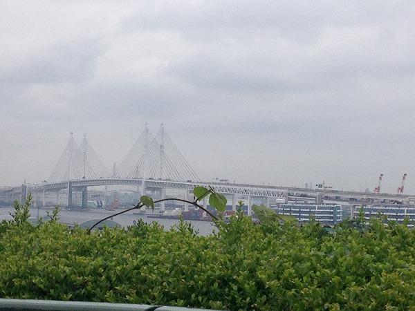 港の見える丘公園からの横浜ベイブリッジ